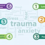 Trauma Informed Systems Banner